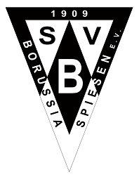 Logo_Satzung
